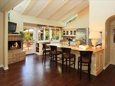 Sunny gourmet kitchen with flatscreen and fireplace.