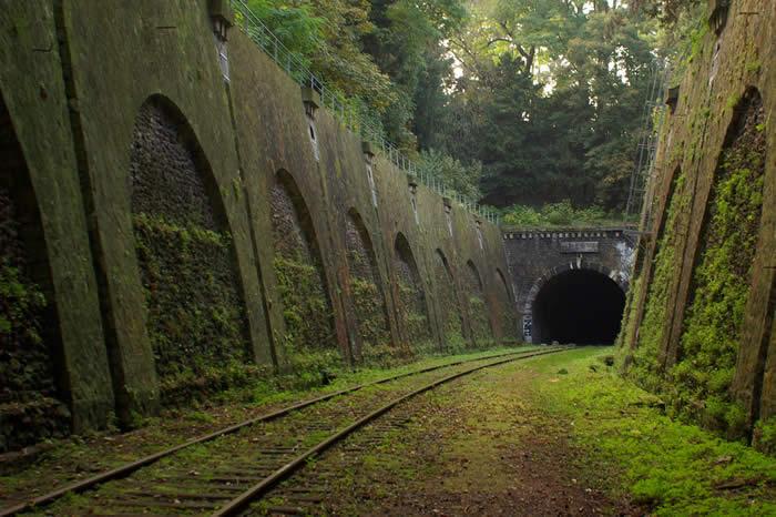 http://twistedsifter.com/2013/04/petite-ceinture-abandoned-railway-in-paris/
