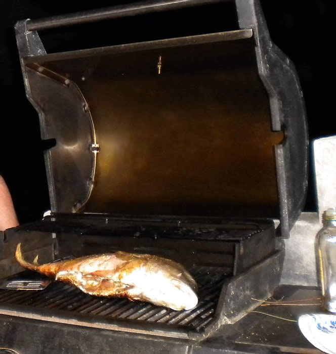 North Caicos condo rental - 10 Pound Snapper on your Gas Grill - yes it tasted oh so good